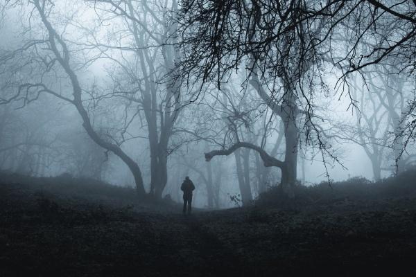 Fot. David - Fotolia.com